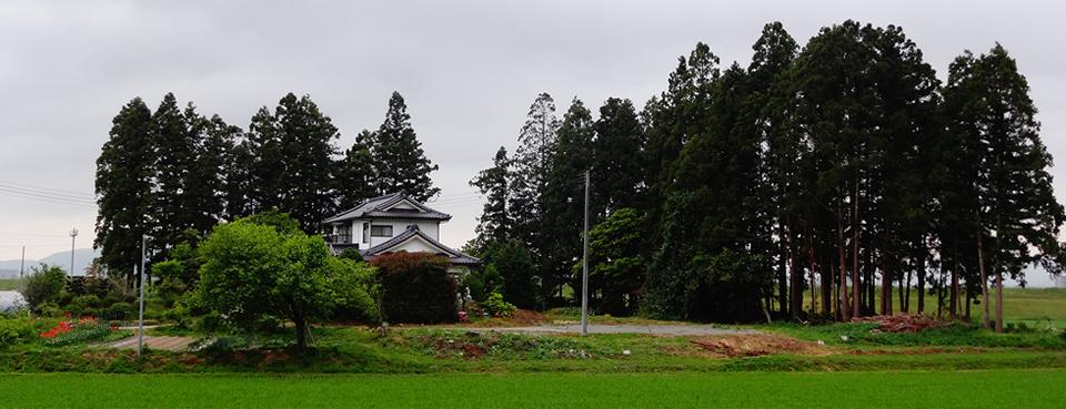東京大学 都市工学専攻 横張研究室